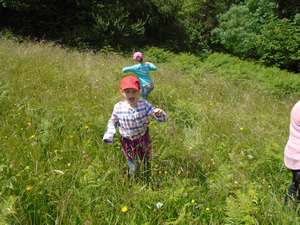 5th July 2016 Welly Walk to the Meadow (2)